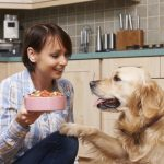 Teach the Value of Responsibility through Pet Ownership